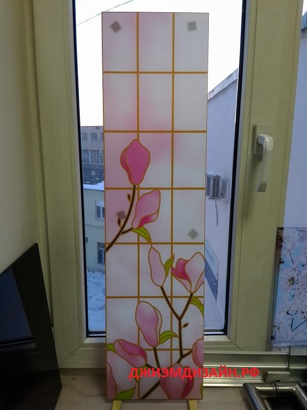 жареные стекло с фотопечатью спб двери